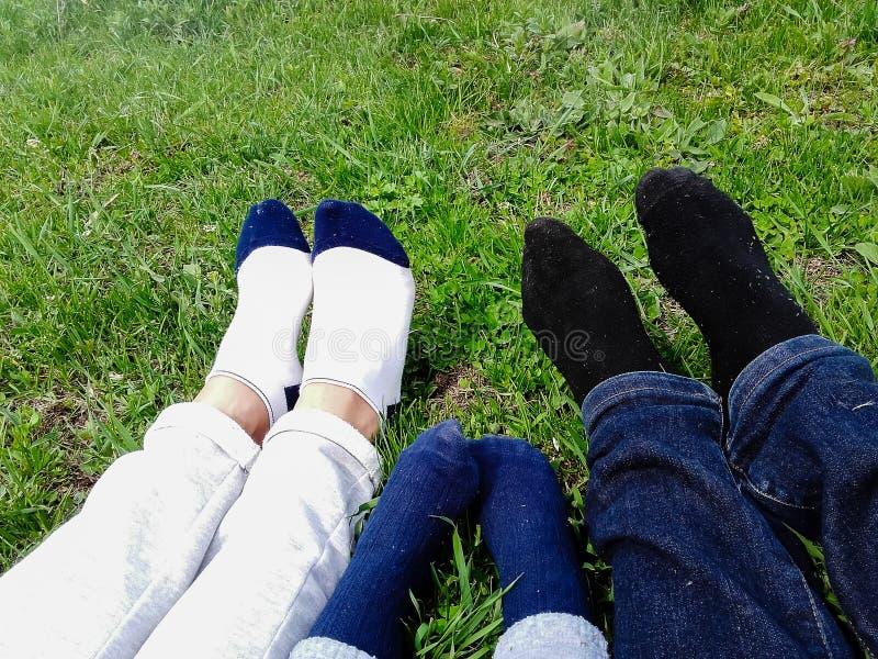 Famille heureuse se situant dans le domaine d'herbe en parc photos libres de droits
