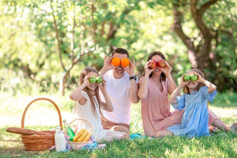 Famille heureuse sur un pique-nique en parc un jour ensoleill? photos libres de droits