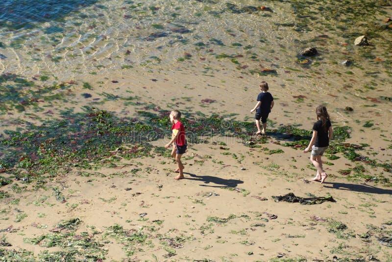 Famille jouant dans le sable image libre de droits