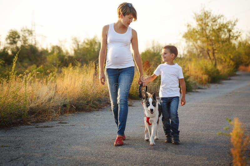 famille La mère et le fils marchent avec un chien photographie stock libre de droits