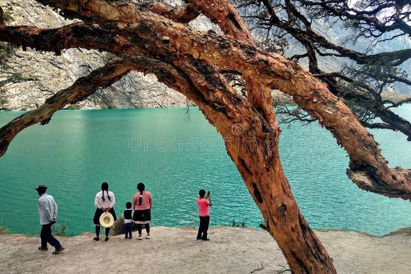 Famille locale et arbres antiques au lac Llanganuco, Pérou image libre de droits