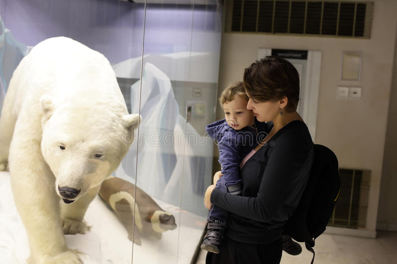 Famille regardant l'ours blanc images stock