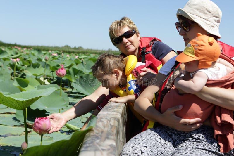 Famille regardant le lotus indien image stock
