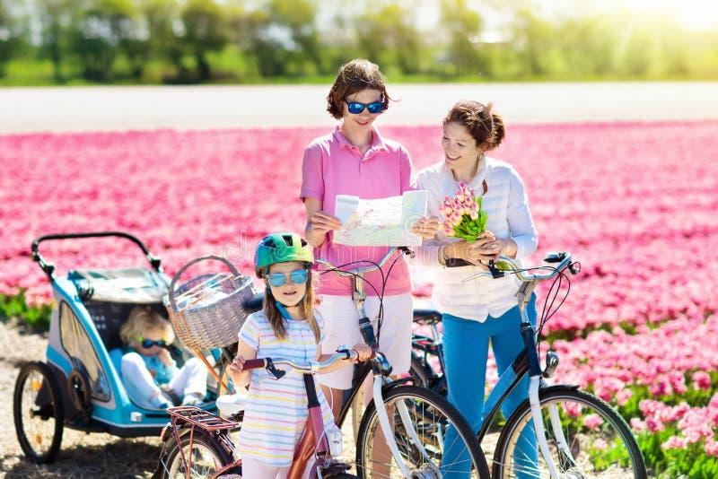 Famille sur le vélo dans des domaines de fleur de tulipe, Hollande photo stock