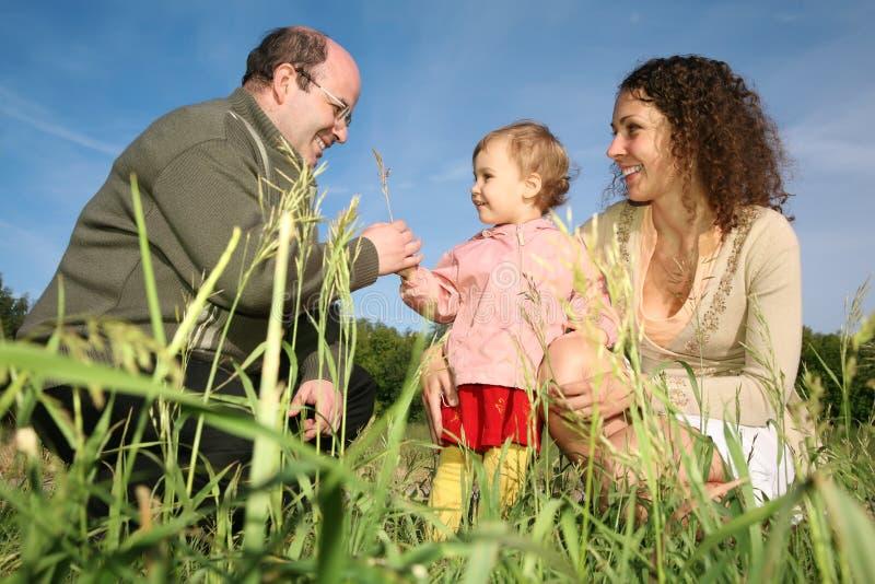 Famille sur un pré photographie stock libre de droits