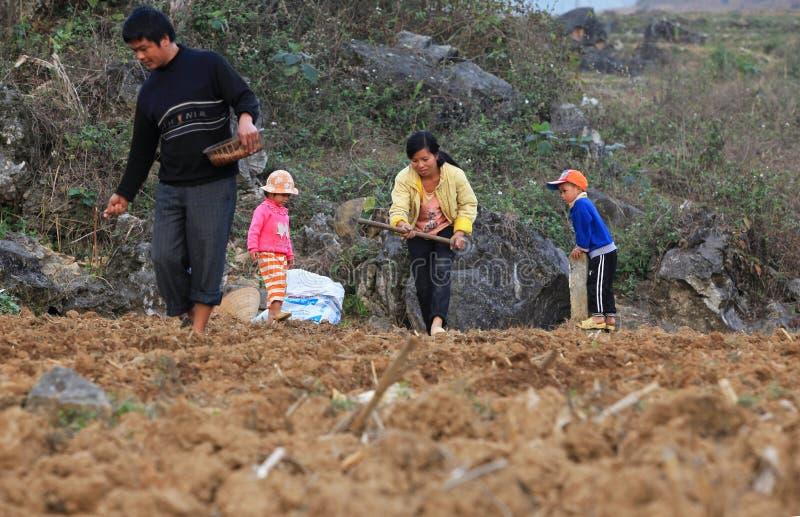 Famille vietnamienne de minorité commençant une nouvelle saison de maïs dans le domaine photo stock