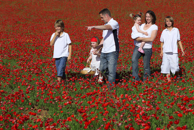 Download Family stock photo. Image of strolling, flowers, outdoors - 9415408