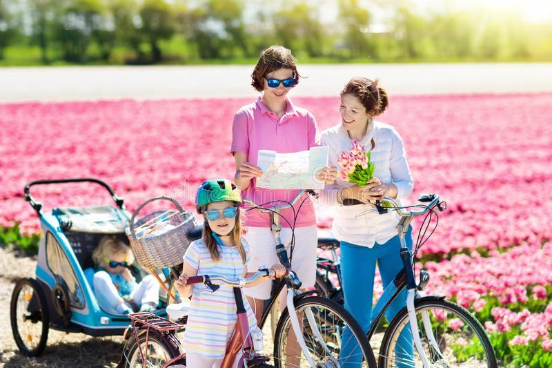 Family on bike in tulip flower fields, Holland stock photo