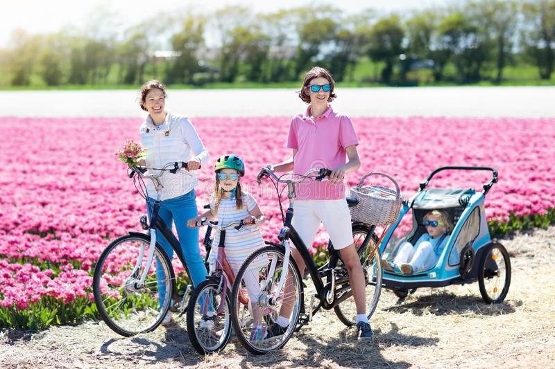 Family on bike in tulip flower fields, Holland. Happy Dutch family riding bicycle in tulip flower fields in Netherlands. Mother and kids on bikes at blooming royalty free stock photography