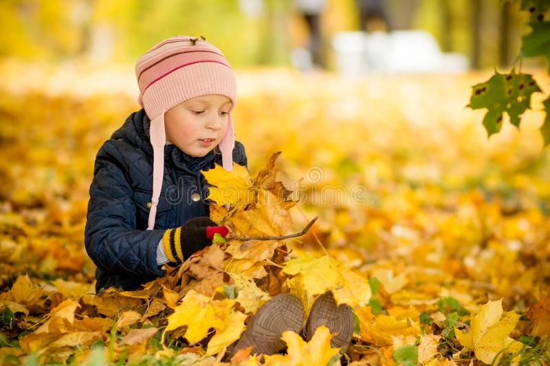 Family, childhood,fall season and people concept, happy girl playing with autumn leaves in park.little child, baby girl. Family, childhood, season and people stock photos