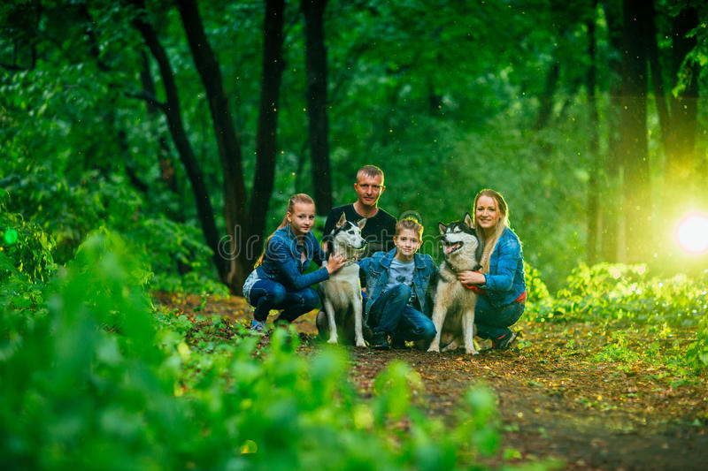 Family with children, and husky dogs in the forest royalty free stock images