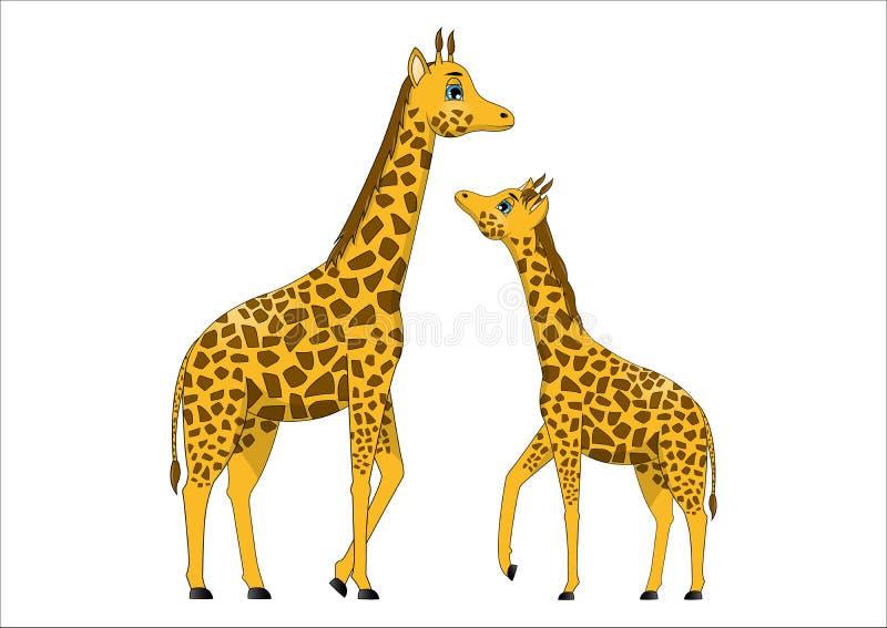 Family of cute cartoon giraffes vector illustration