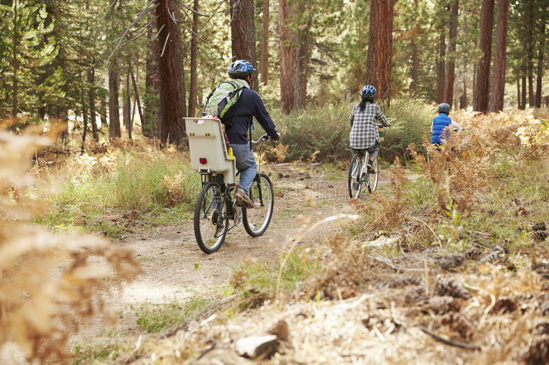 Family cycling through a forest, back view stock image