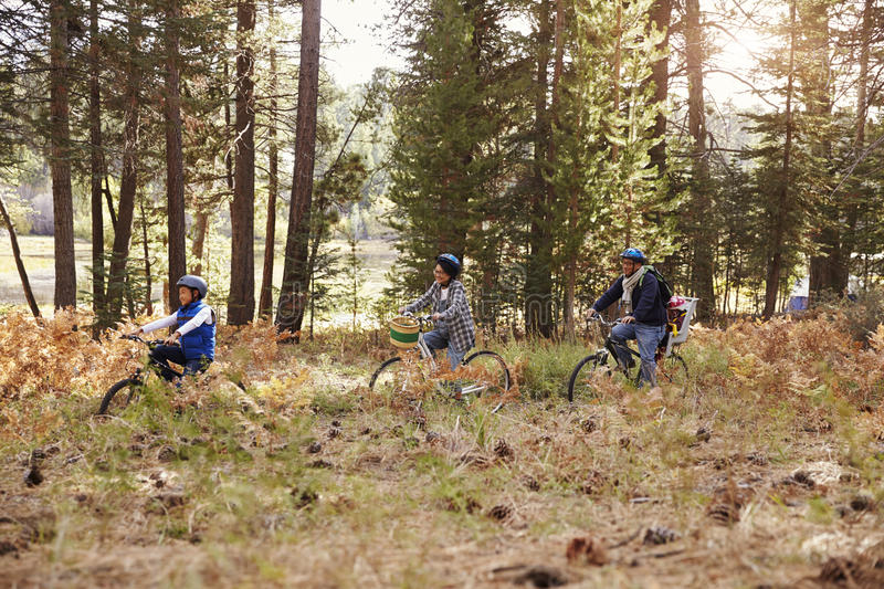 Family cycling through a forest together, side view, closer stock images