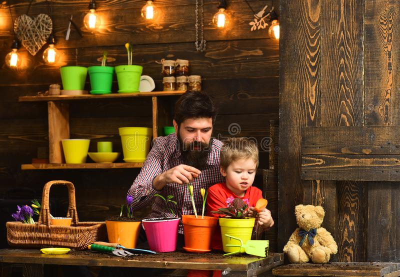 Family day. Greenhouse. Father and son. Fathers day. Flower care watering. Soil fertilizers. happy gardeners with spring. Flowers. bearded men and little boy royalty free stock photos