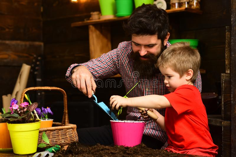 Family day. Greenhouse. Father and son. happy gardeners with spring flowers. Flower care watering. Soil fertilizers. Bearded men and little boy child love royalty free stock photos