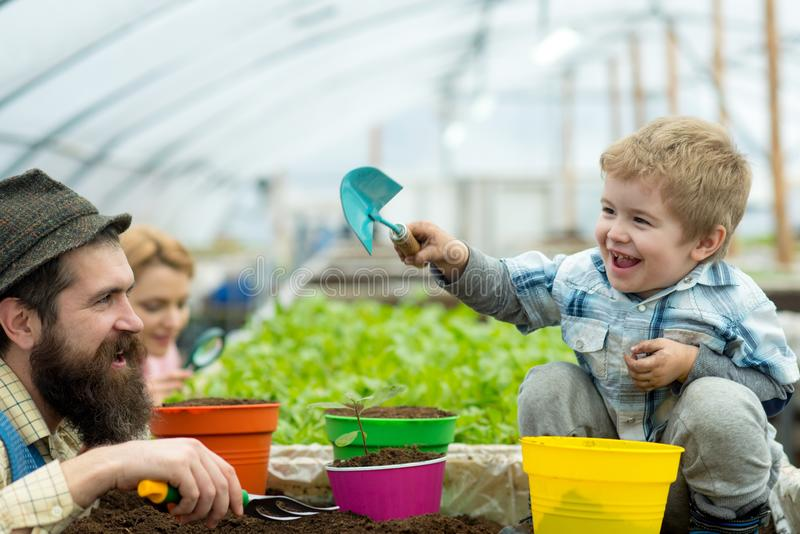 Family day. happy family day. international family day. family day with father mother and son working in greenhouse. Spending great time with relatives royalty free stock image