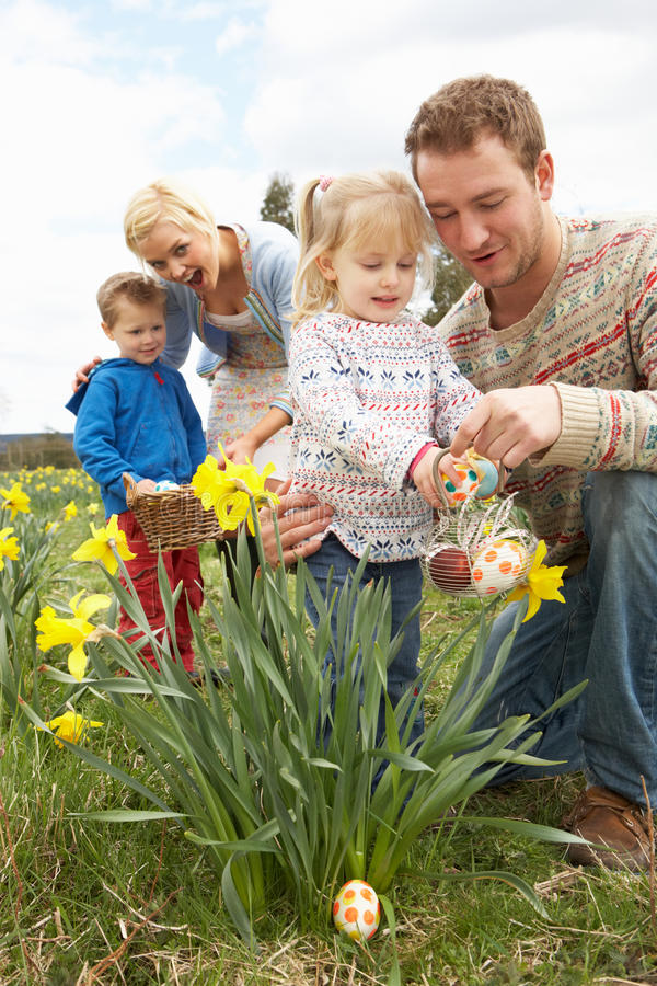 Family On Easter Egg Hunt In Daffodil Field royalty free stock photography