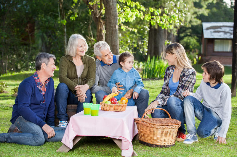 Family Enjoying Picnic At Campsite royalty free stock photo
