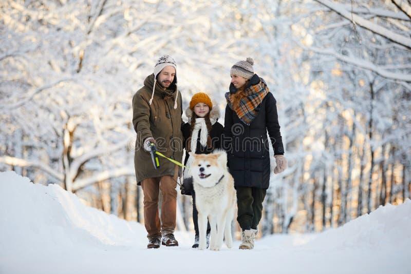 Family Enjoying Walk with Dog royalty free stock image