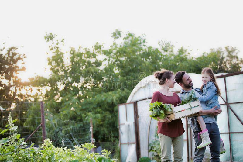 Family of famers carrying their vegetables home in wooden boxes, at the end of the day, the Father is carrying their daughter. Portrait of a family of famers royalty free stock image