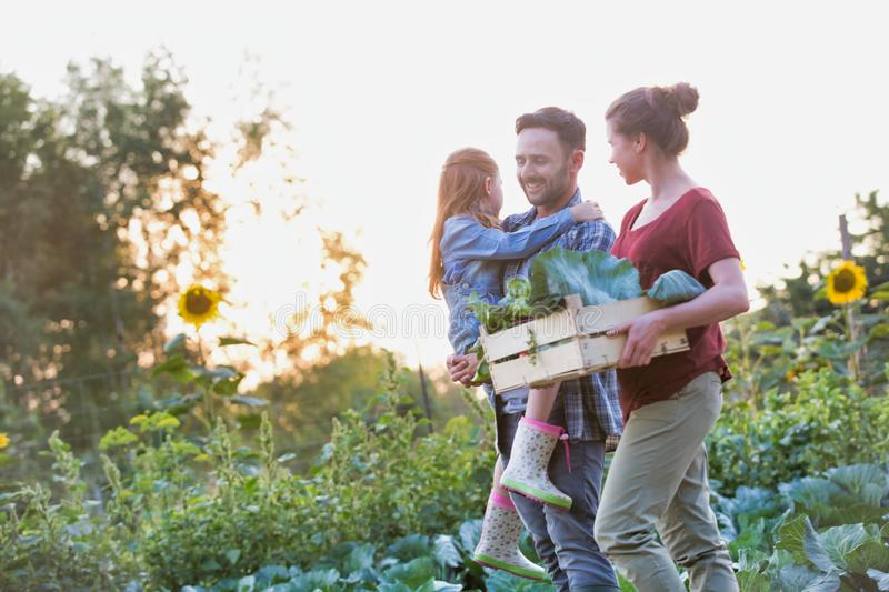 Portrait of Family of famers carrying their vegetables home in wooden boxes, at the end of the day, the Father is carrying their d. Family of famers carrying royalty free stock photography