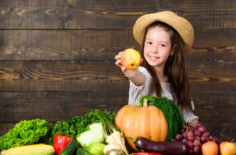 Family farm festival concept. Farm activities for kids. Traditional autumnal fest. Child celebrate harvesting. Girl kid. Farm market with fall harvest. Kid royalty free stock images