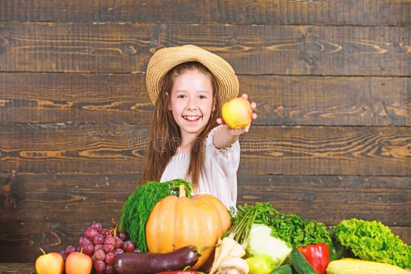 Family farm festival concept. Farm activities for kids. Traditional farm market. Child celebrate harvesting. Girl kid. Farm market with fall harvest. Kid farmer stock images