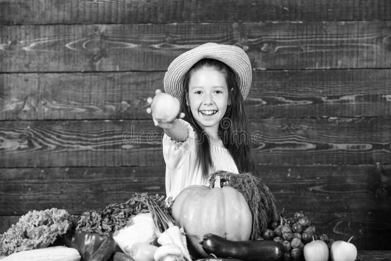 Family farm festival concept. Farm activities for kids. Traditional farm market. Child celebrate harvesting. Girl kid. Farm market with fall harvest. Kid farmer royalty free stock photography
