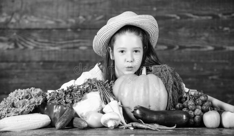 Family farm festival concept. Farm activities for kids. Traditional farm market. Kid farmer with harvest wooden. Background. Child celebrate harvesting. Girl stock images