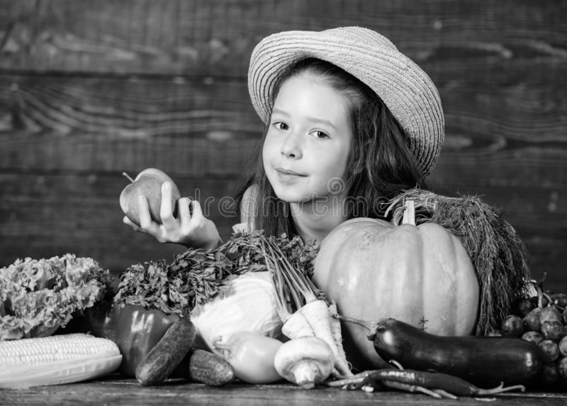 Family farm festival concept. Traditional autumnal fest. Farm activities for kids. Girl kid farm market with fall royalty free stock photos