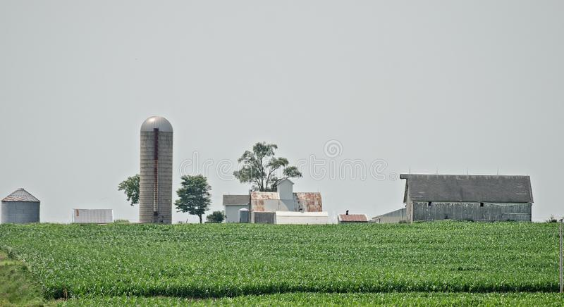 Family Farm in the summer royalty free stock photography