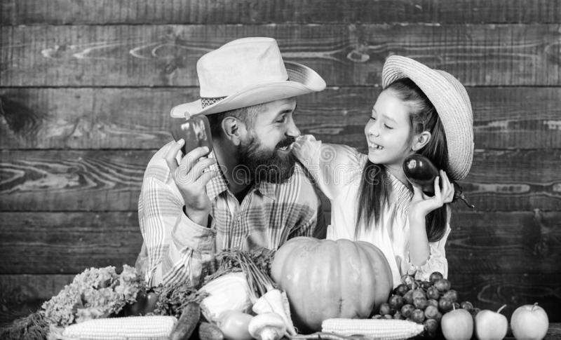 Family father farmer gardener with daughter near harvest vegetables. Countryside family lifestyle. Farm market with fall royalty free stock photos