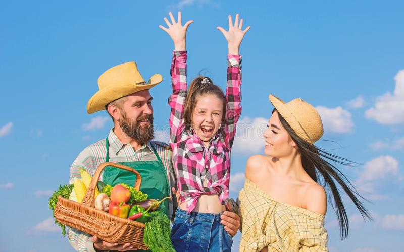 Family father farmer mother gardener with daughter near harvest. Family farm festival concept. Countryside family royalty free stock photography