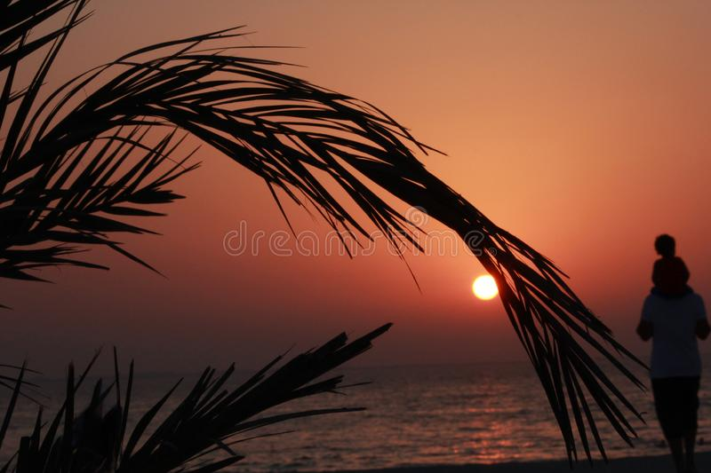 Family father son travel beach sunset date palm tree silhouette sun sea water. Travel holiday stock image