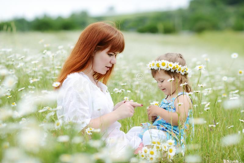 Family in field of daisies stock photography