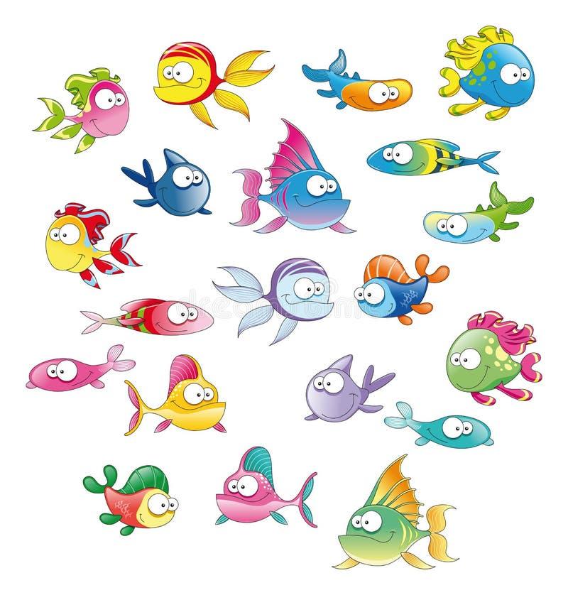 Family Of Fish Stock Photo