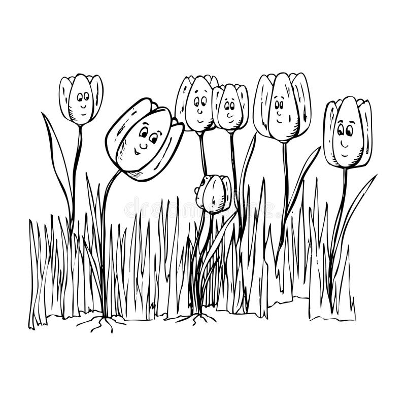 Family flowers - tulips. Illustration of flowers family, black and white version. Useful also for educational or coloring books for kids. You can find other b/w stock illustration