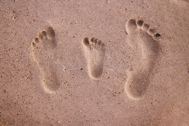 Download Family Footprints In The Sand Stock Illustration - Image: 32382323