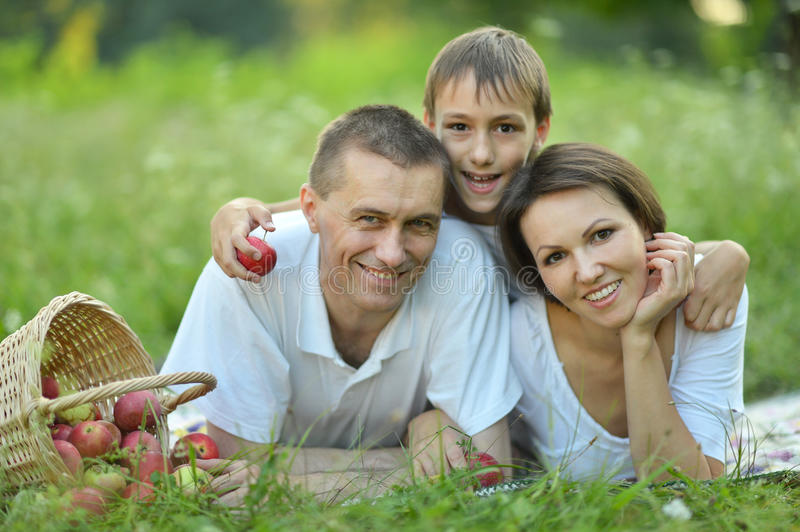 Family of four is having picnic stock photography