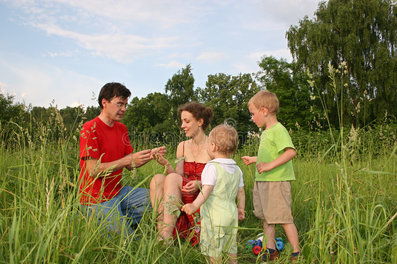 Download Family of four on meadow stock image. Image of family, love - 904259