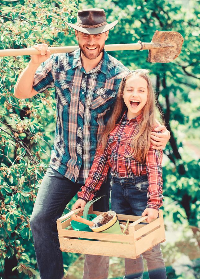 Family garden. Transplanting vegetables from nursery or gardening center. Maintain garden. Planting flowers. Family dad royalty free stock image