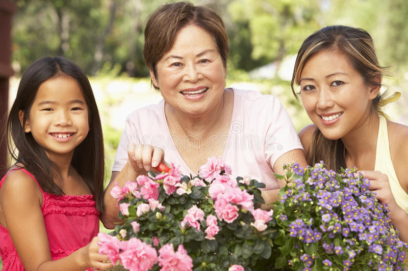 Download Family Gardening At Home stock photo. Image of happy - 11502632