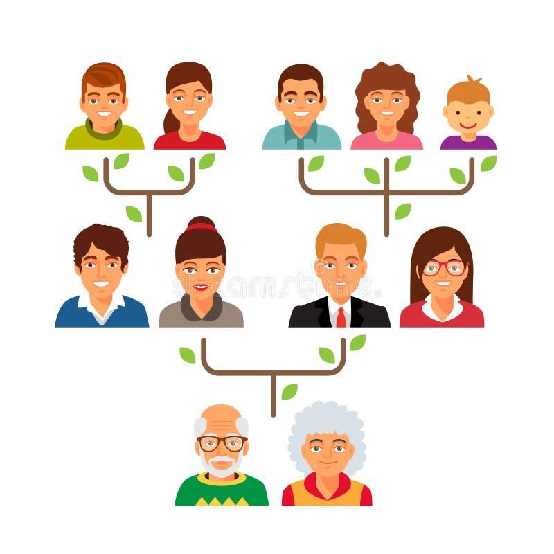 Family genealogy tree diagram chart. Flat style vector illustration isolated on white background royalty free illustration
