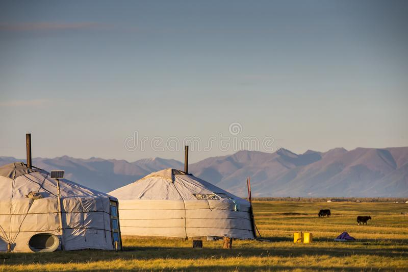 Family gers in a landscape of norther Mongolia stock image