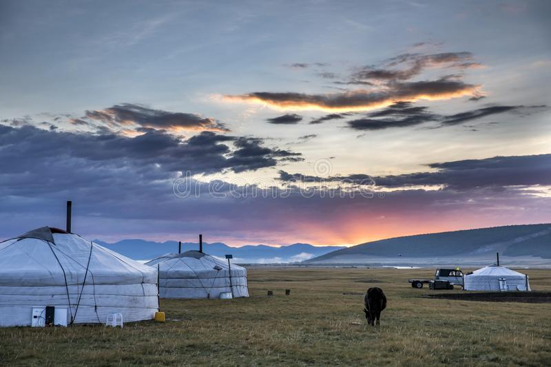 Family gers in a landscape of norther Mongolia stock photo