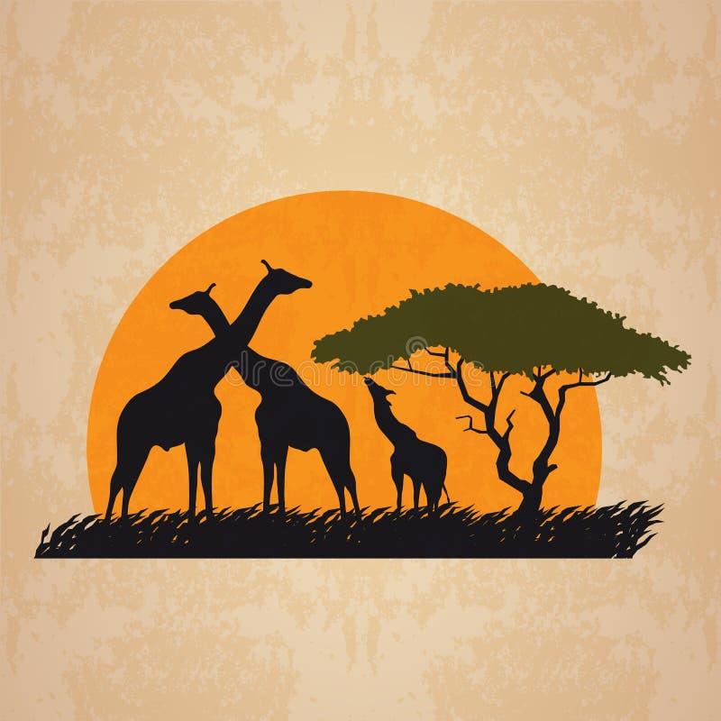 Free Family Giraffe On Meadow In African And Sun Retro Vector Art Design Stock Photos - 73855733