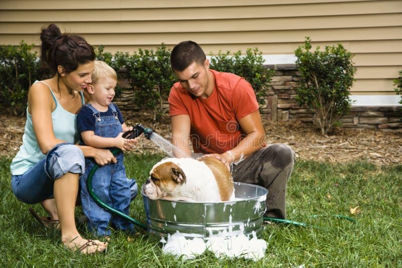 Family giving dog a bath. stock image