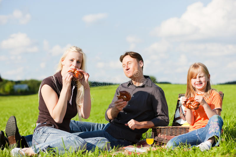 Download Family having picnic stock photo. Image of offspring - 12384112