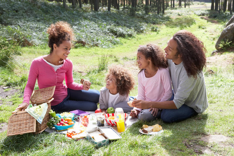 Family Having Picnic In Countryside royalty free stock images